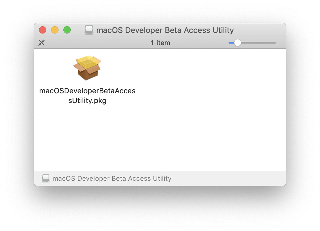 Macos catalina developer beta access utility